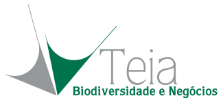 Teia Bn